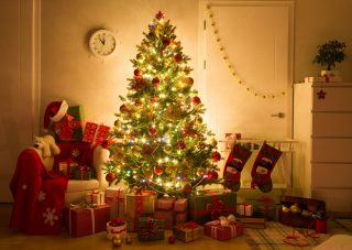 xmas-tree via shutterstock