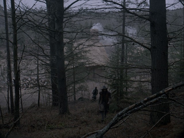 dark woods in the movie the witch