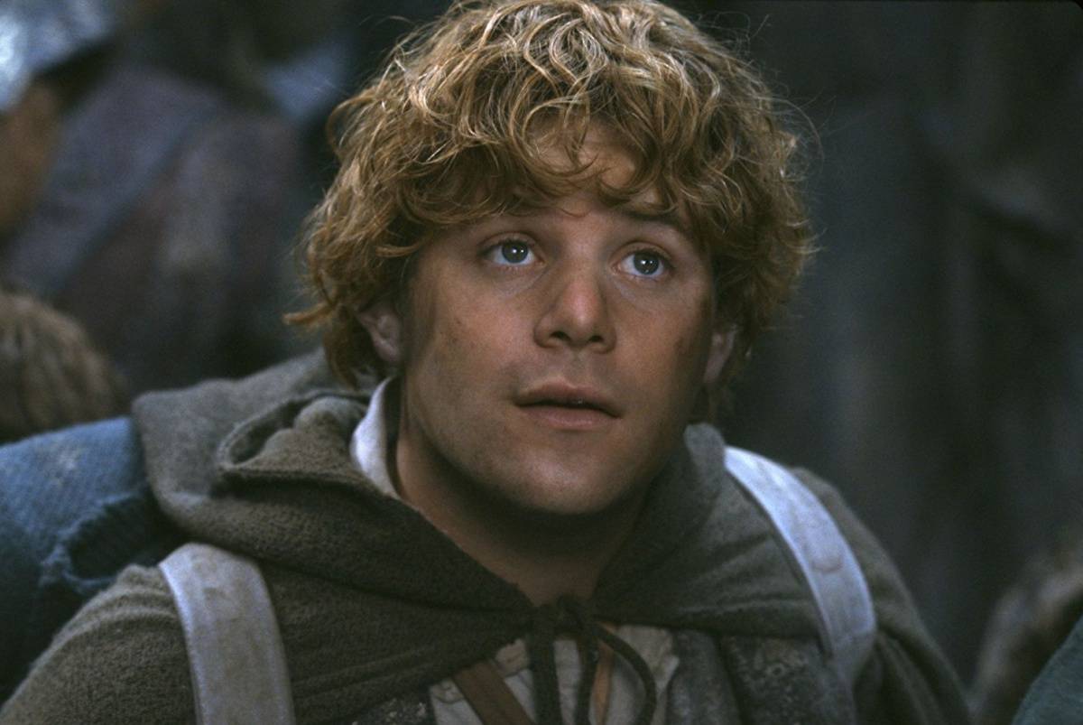 Sean Astin in The Lord of the Rings: The Fellowship of the Ring (2001)