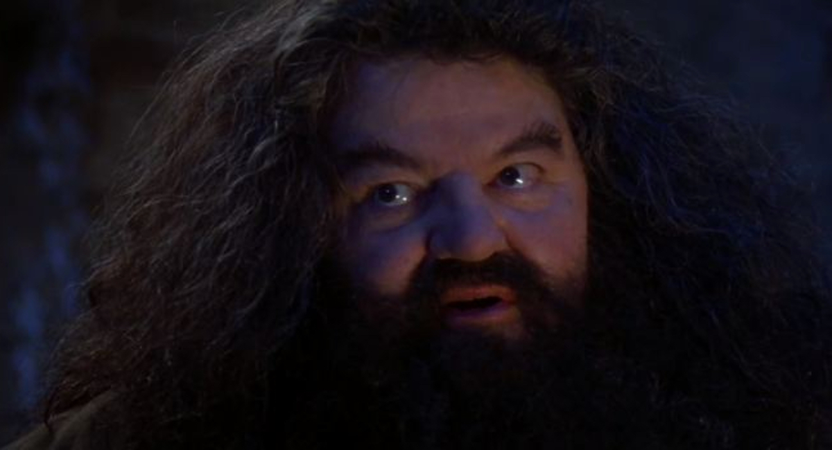 Hagrid (Robbie Coltrane) tells Harry about his powers in Harry Potter and the Sorcerer's Stone.