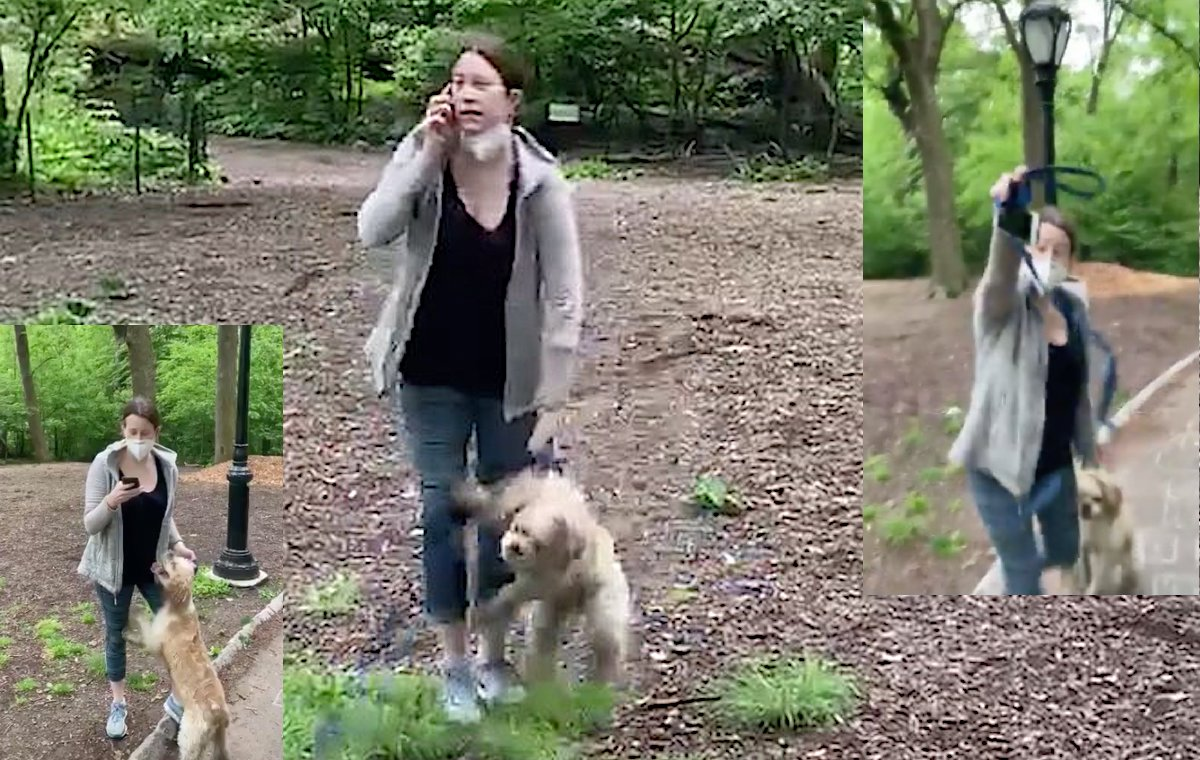 Amy Cooper yanks her dog's leash while calling the police.