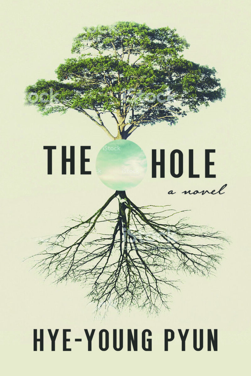 Book cover for The Hole by Hye-Young Pyun